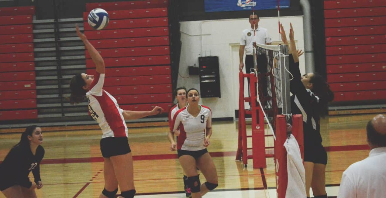 Denison enters conference tournament after two losses