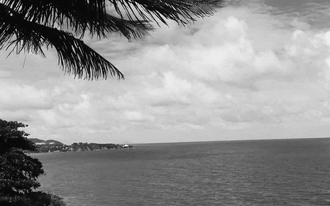 Hurricane Maria: how can Denison help?