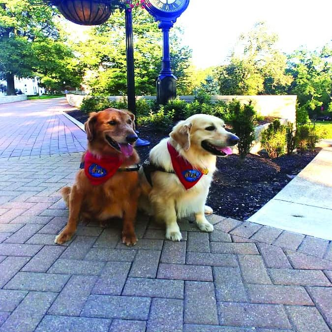 Paws and Relax returns to Slayter to help students de-stress